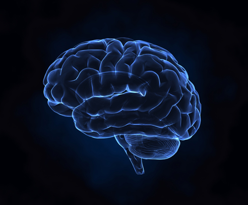 finding-a-competent-professional-who-uses-this-new-brain-science-thinking